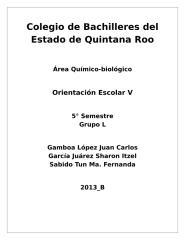 Carpeta Profesiográfica.docx