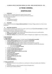 anato2an31-tronc_cerebral2_poly.pdf