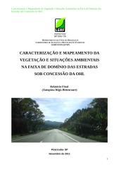 Relatório Final (Regis Bittencourt)_2.doc