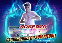 33  RECORDANDO COM O SUPER POP LIVE - JUNIOR CALADO.mp3